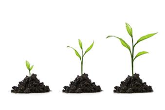 Les entreprises de croissance Online Training Course