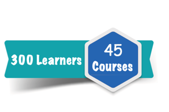 300 Learner Subscription for 45 Courses Online Training Course