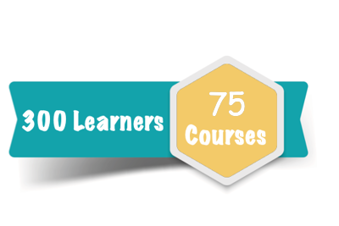 300 Learner Subscription for 75 Courses Online Training Course