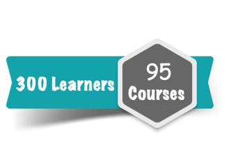 300 Learner Subscription for 95 Courses Online Training Course